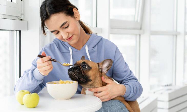Veja quais comidas 'humanas' você pode dar para o seu pet... de vez em quando!
